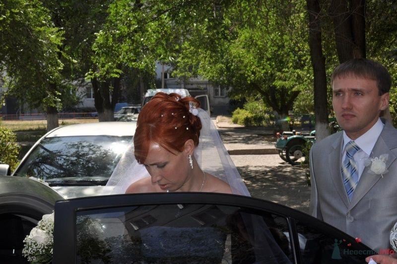 Фото 34764 в коллекции Наша свадьба - Катринка@Leopardik