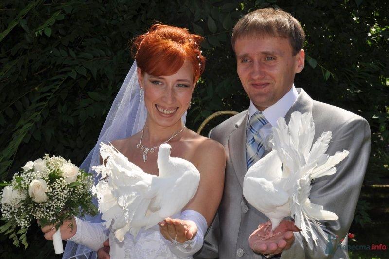 Фото 34777 в коллекции Наша свадьба - Катринка@Leopardik