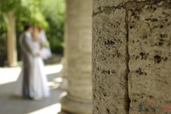 Фото 35280 в коллекции Наша свадьба - Катринка@Leopardik