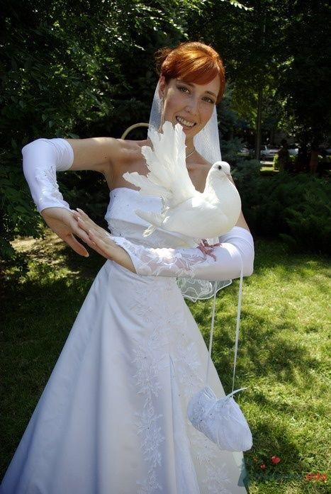Фото 35291 в коллекции Наша свадьба
