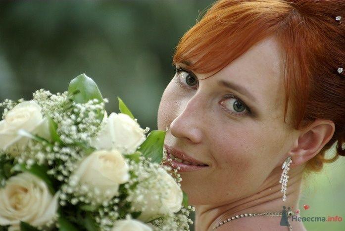 Фото 35334 в коллекции Наша свадьба - Катринка@Leopardik