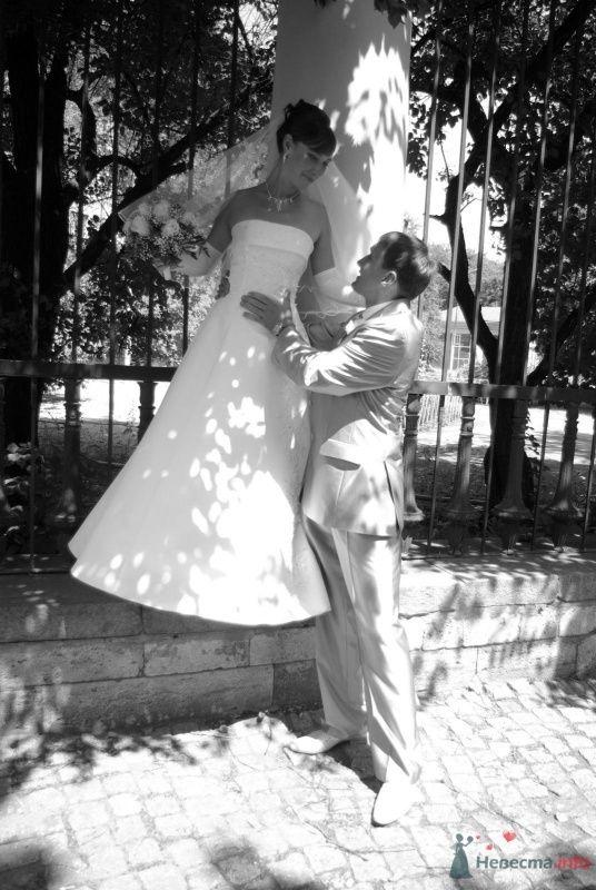 Фото 35370 в коллекции Наша свадьба - Катринка@Leopardik