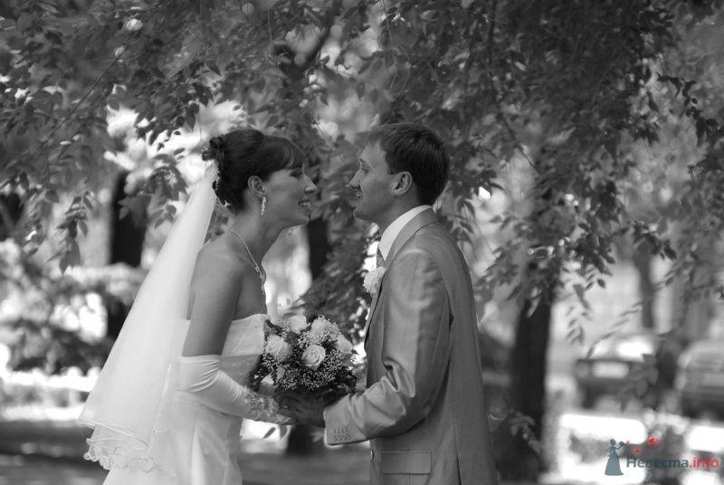 Фото 35380 в коллекции Наша свадьба - Катринка@Leopardik