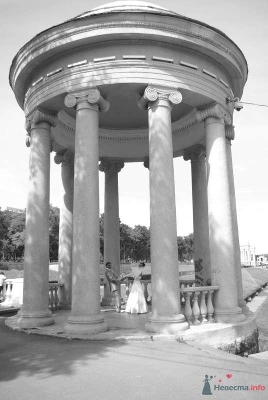 Фото 35381 в коллекции Наша свадьба - Катринка@Leopardik