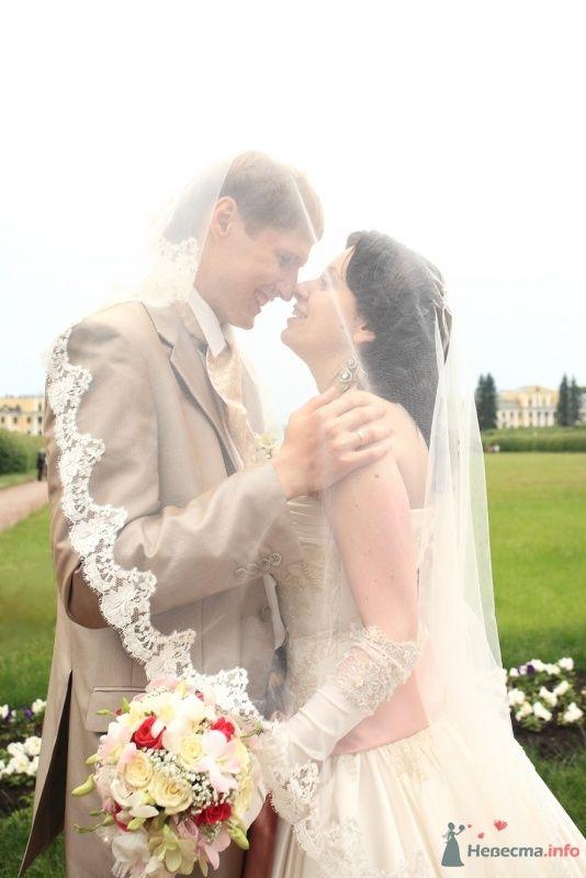Фото 32100 в коллекции Наша свадьба - kelly