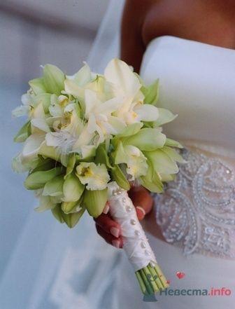 Фото 33593 в коллекции свадебный переполох