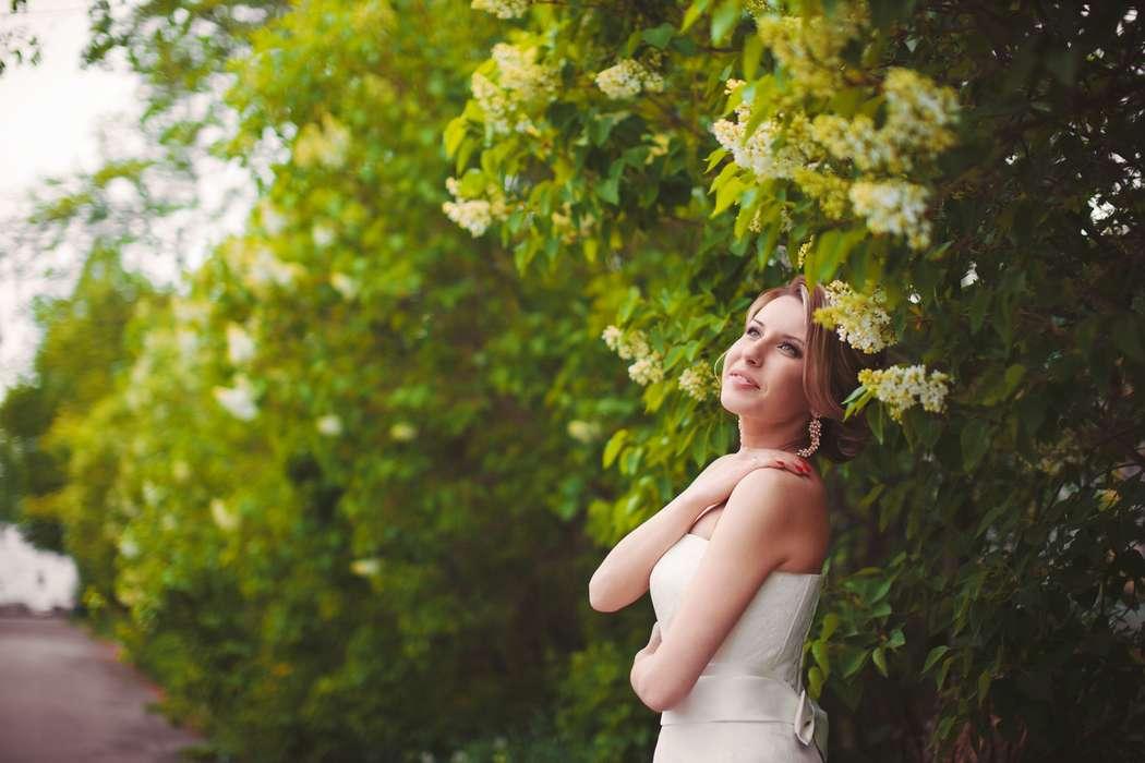 Фото 4629585 в коллекции 2014 год - Фотограф Анна Гурова