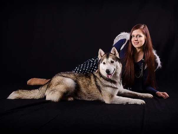 Фото 5474701 в коллекции Фото сессия с собаками - Праздничное агенство Event Art