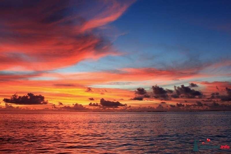 Фото 104347 в коллекции Мальдивы  -  идеальное место для медового месяца. - barbie