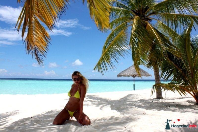 Фото 104388 в коллекции Мальдивы  -  идеальное место для медового месяца. - barbie