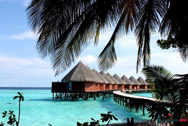 Фото 104727 в коллекции Мальдивы  -  идеальное место для медового месяца. - barbie