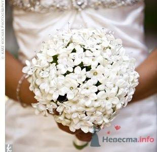 Фото 54891 в коллекции Разное - Невеста01