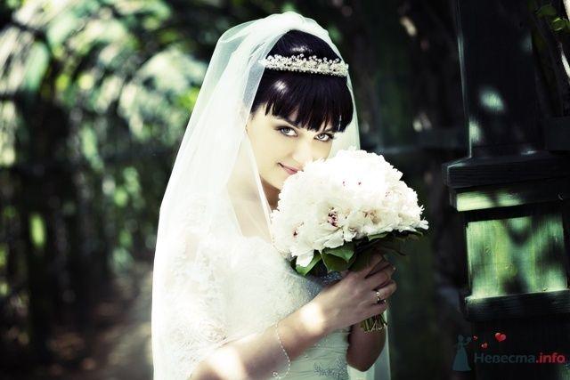Фото 58942 в коллекции свадьба 22.05.2009 - jasmine