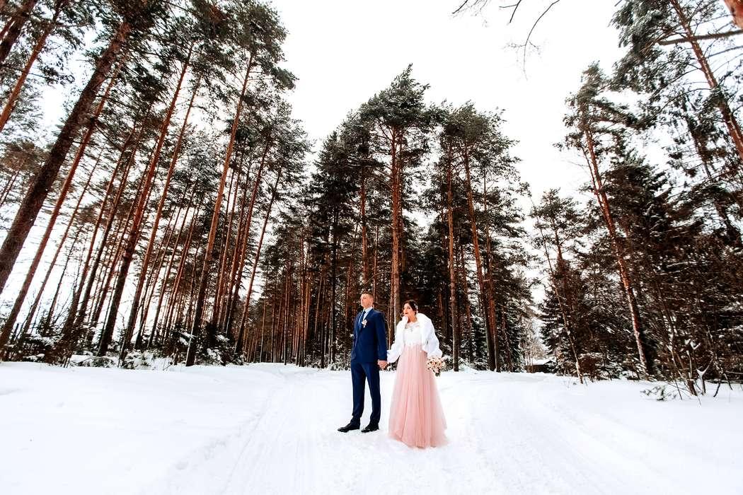Фото 17161446 в коллекции Портфолио - Фотограф Дмитрий Паутов