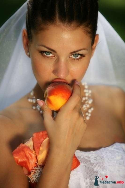 Фото 251133 в коллекции Свадебная фотография - Фотограф Николай Хорьков