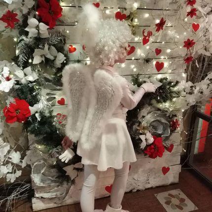 Ангел шоу