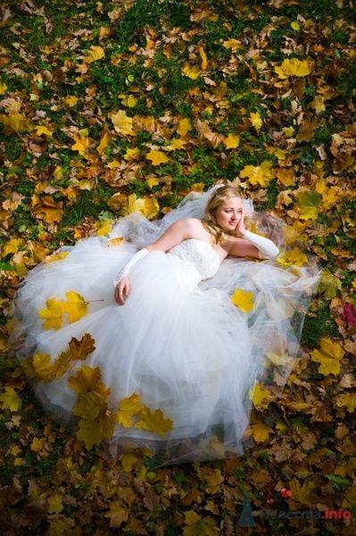 """Фото 44561 в коллекции разное) (для """"пообщаться на форуме"""") - Невеста01"""