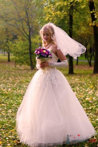 """Фото 44563 в коллекции разное) (для """"пообщаться на форуме"""") - Невеста01"""