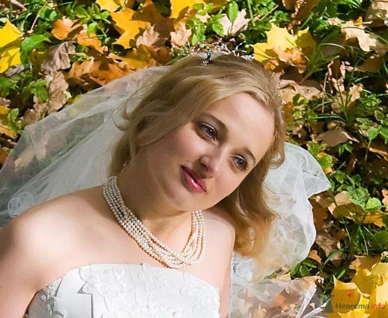 """Фото 65810 в коллекции разное) (для """"пообщаться на форуме"""") - Невеста01"""