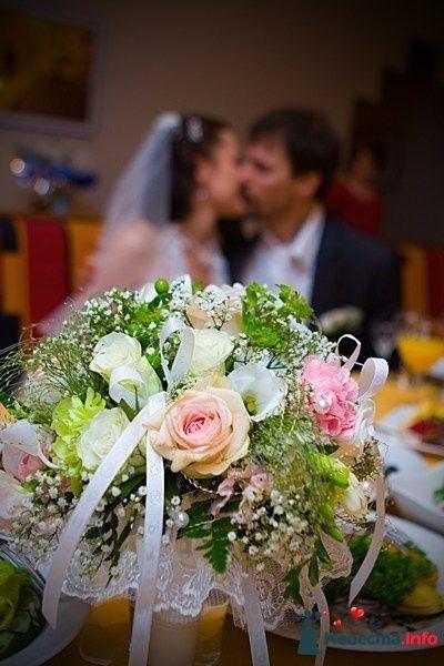 """Фото 85380 в коллекции разное) (для """"пообщаться на форуме"""") - Невеста01"""