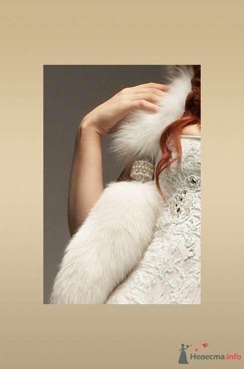 Фото 54202 в коллекции Платье, которые нравяться - Wamira