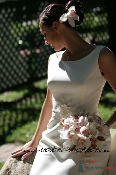 Фото 54273 в коллекции Платье, которые нравяться - Wamira