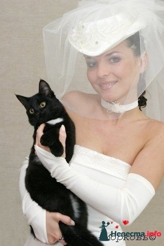 Фото 95475 в коллекции Свадебные прически (фотографии сняты не мной)