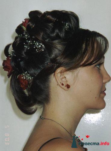Фото 95496 в коллекции Свадебные прически (фотографии сняты не мной)  - Wamira