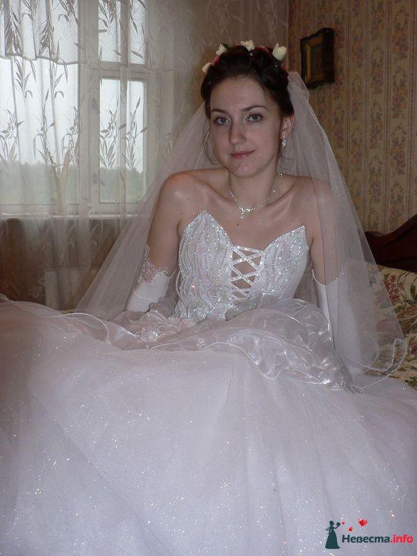 моя фоторабота, Лиза - фото 95530 Wamira