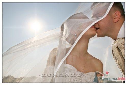 Фото 21605 в коллекции свадебные