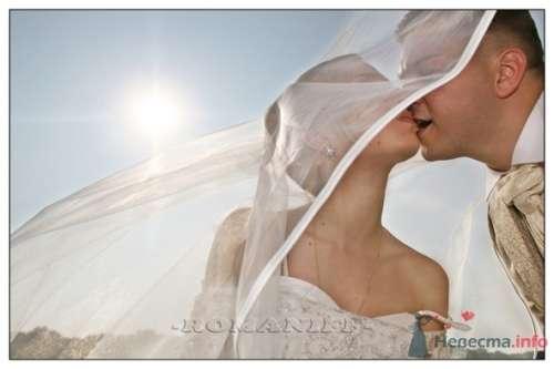 Фото 21605 в коллекции свадебные - Олег и Юлия Романив - свадебная фотосъемка