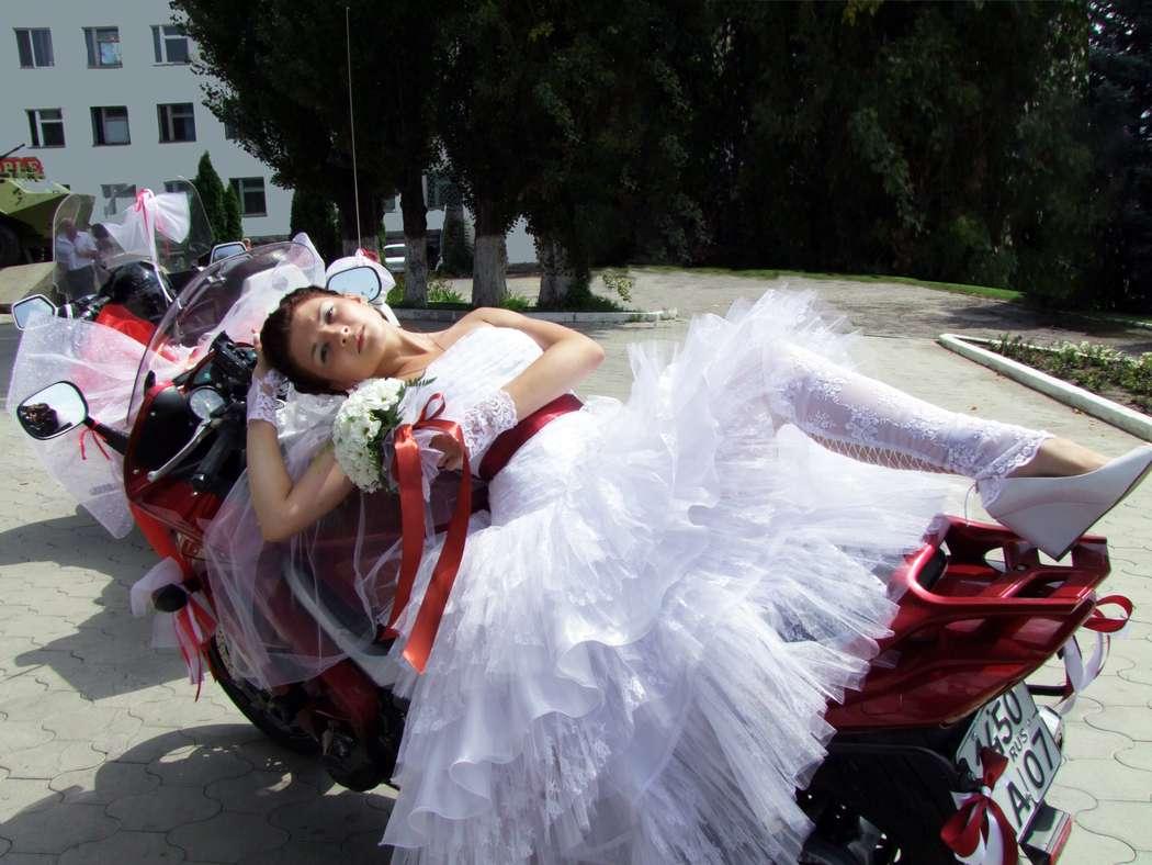 """Фото 517176 в коллекции свадебные фото. Фотограф Наталья - Арт-студия """"Улыбка"""""""