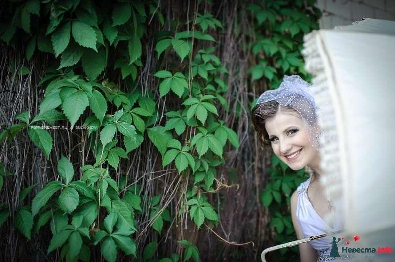 Фото 442567 в коллекции Невесты - Фотограф Андрей Булахов