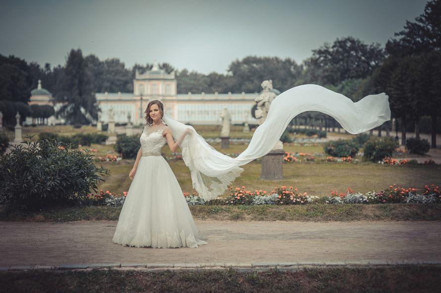 Кусково - фото 8326454 Видеограф Leonid Leshakov