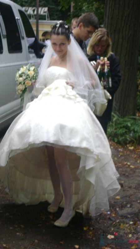 Фото 58786 в коллекции наша свадьба))) - myxen4ek