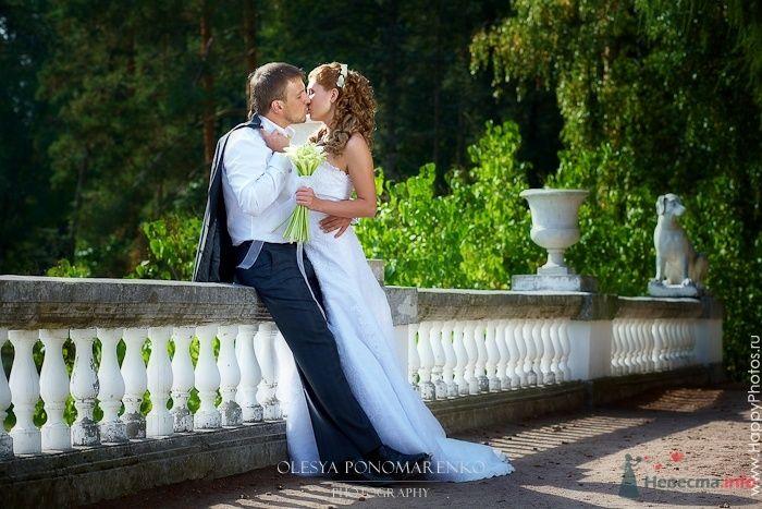 Фото 51222 в коллекции 12.09.09 - Невеста01