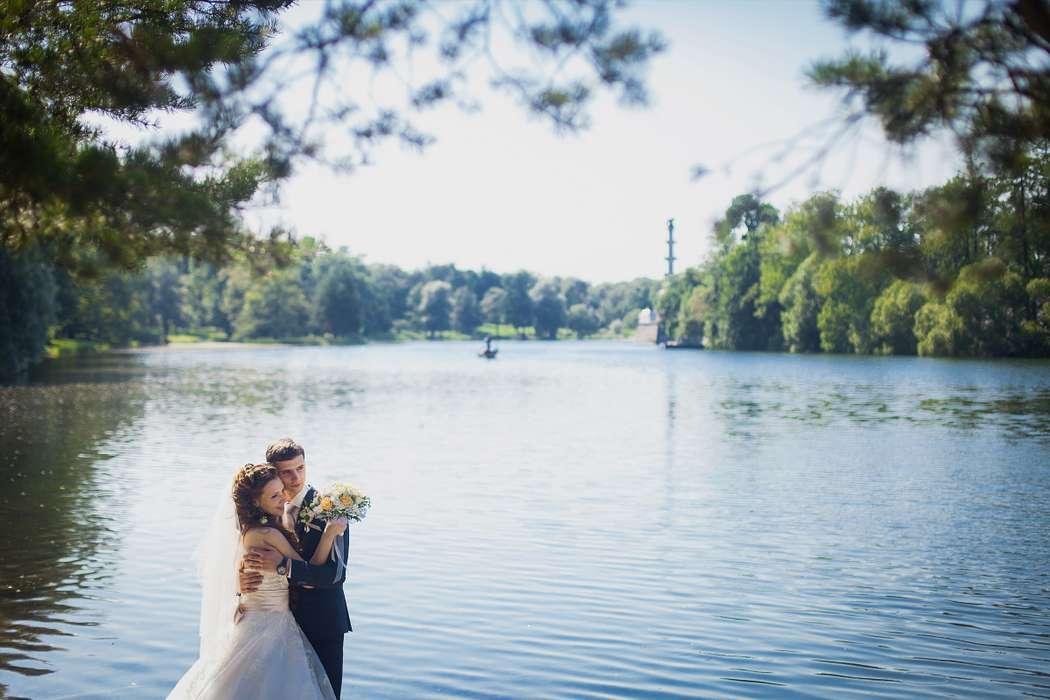 Фото 7287158 в коллекции Weddings - Imaginestudio - видеосъёмка