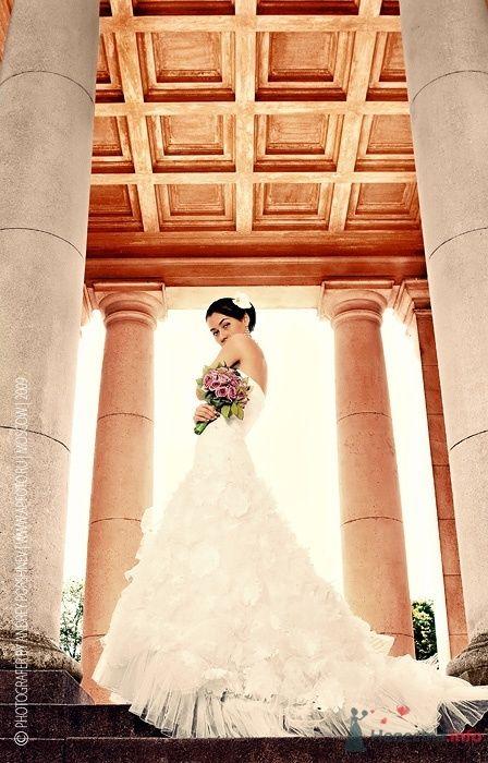 Фото 41706 в коллекции Фотографии со свадеб - Фотограф Андрей Поршнев