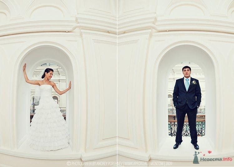 Фото 46272 в коллекции Фотографии со свадеб - Фотограф Андрей Поршнев