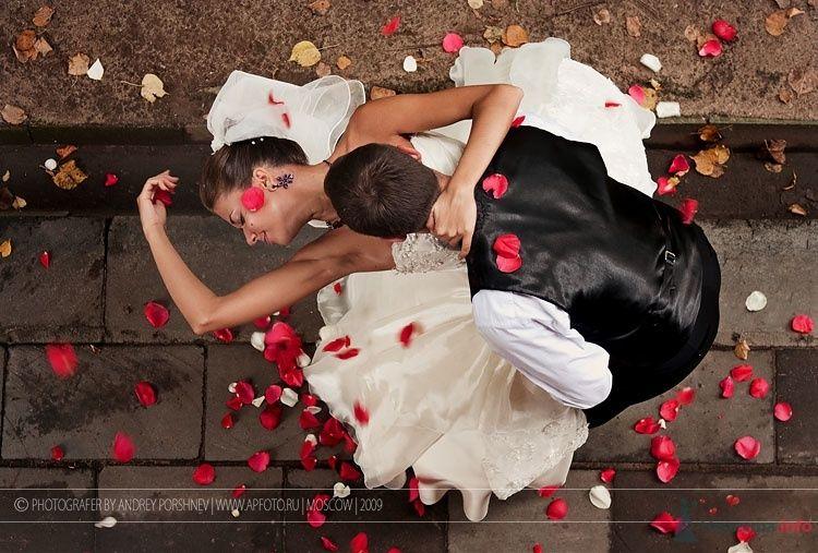 Фото 55524 в коллекции Фотографии со свадеб - Фотограф Андрей Поршнев