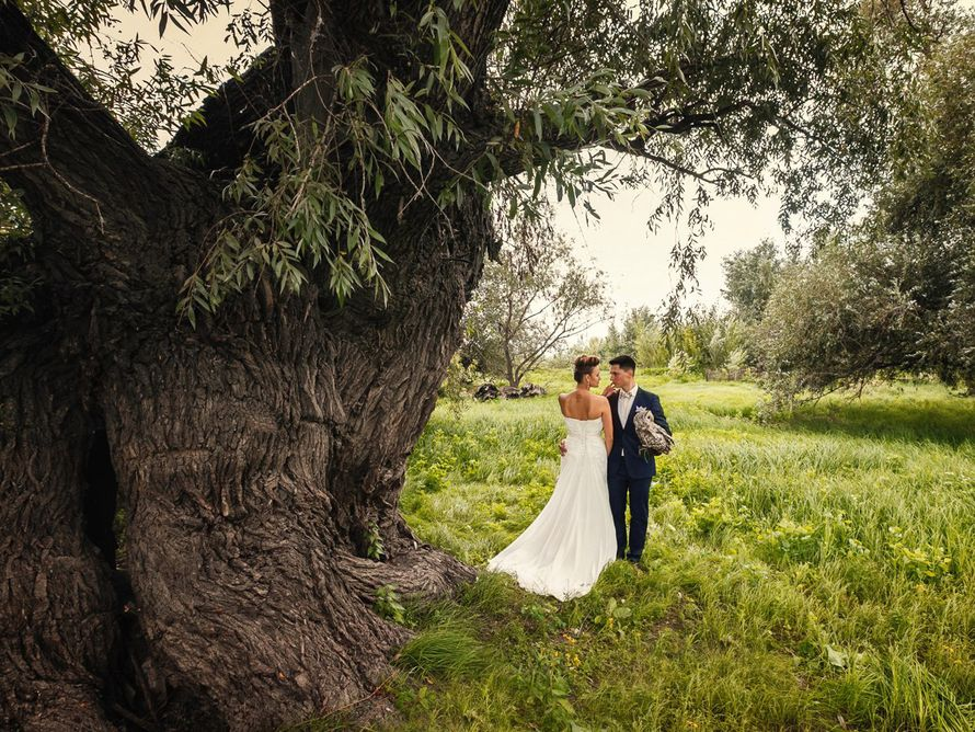 Фото 15359960 в коллекции Свадьба Алёны и Аркаши - Фотограф Вера Петрова
