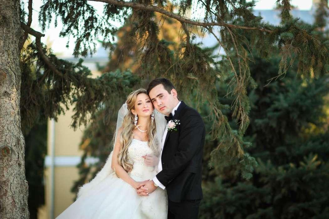 Фото 9504662 в коллекции свадьбы ) - Фотограф Наталья Фирсова