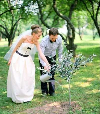 Фото 7252628 в коллекции А, ты готов превратить свою свадьбу в яркое, незабываемое событие... - Ведущий Александр Кужелев