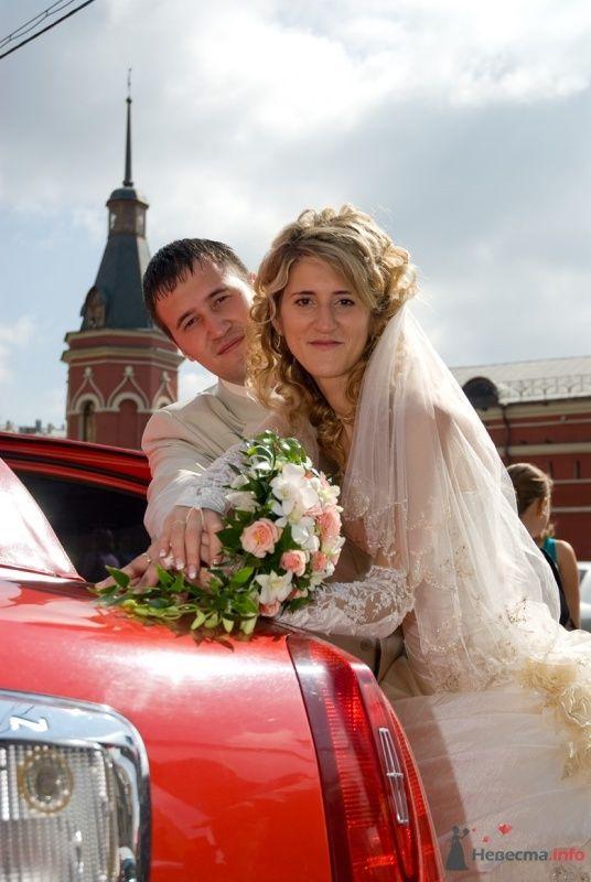 Фото 58750 в коллекции Моя свадьба - Иришка-мышка