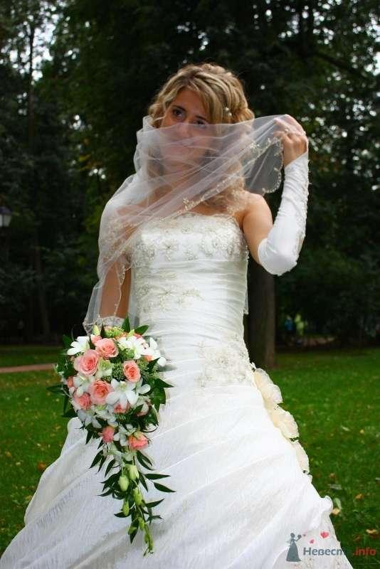 Фото 58758 в коллекции Моя свадьба - Иришка-мышка