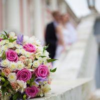 Свадебная фотопрогулка, фотосъемка свадьбы, фотопрогулка, свадьба, молодожены, свадьба, свадебный фотограф, Галина Жижикина.