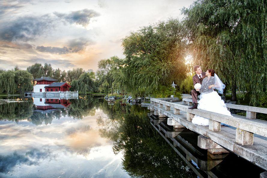 Фото 10597566 в коллекции Свадебная фотосъёмка - Фотограф Инна Чекурда