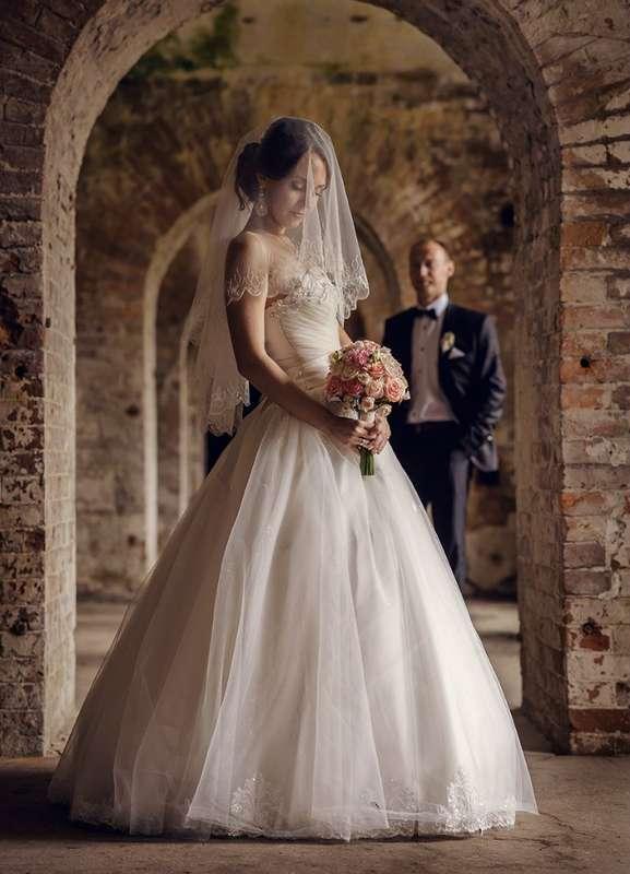 Фото 8320864 в коллекции Свадебная съемка - Фотограф Надежда Горох