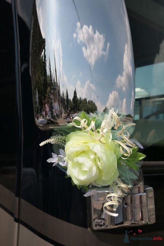 """Фото 29704 в коллекции Встреча """"Невеста.info"""" на Воробьёвых горах 12 июля 2009 года"""