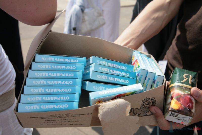 """Фото 29707 в коллекции Встреча """"Невеста.info"""" на Воробьёвых горах 12 июля 2009 года"""
